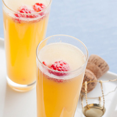 Mimosa Ideal Protein